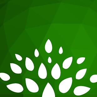Логотип школы «Sri Sai Prasanthi School»